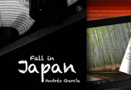Fall in Japan. Andrés García